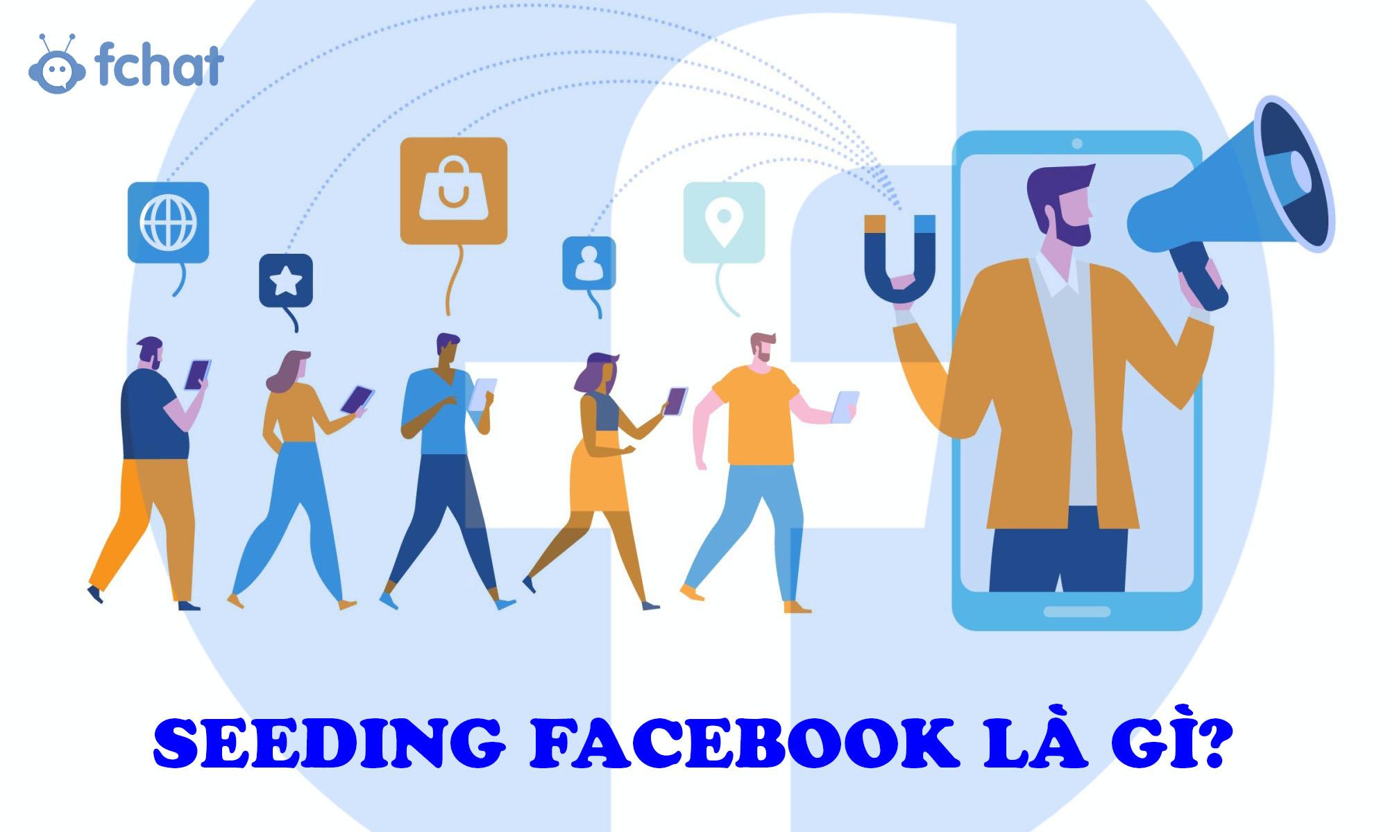 Seeding Facebook là gì? Cẩm nang Seeding Facebook từ A - Z cho người mới  bắt đầu